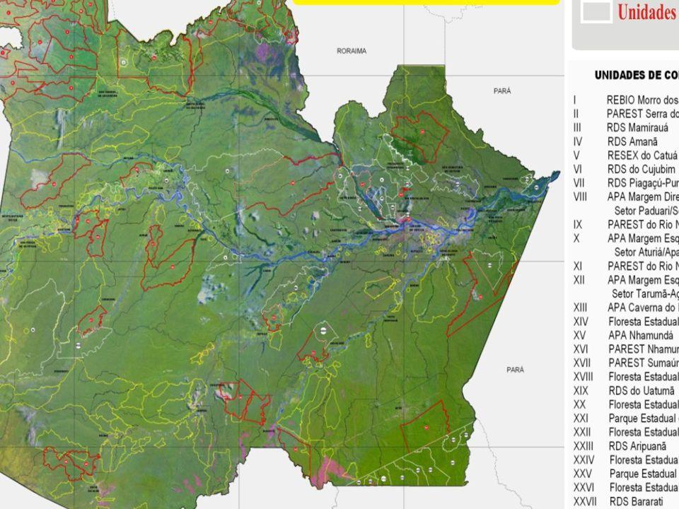 UNIDADES DE CONSERVAÇÃO - UCs NO AMAZONAS DO TOTAL DE APROXIMADAMENTE 18 MILHÕES DE HECTARES DE UCs, 2.312.101 HA SÃO DE PROTEÇÃO INTEGRAL E, O RESTANTE, UCs DE USO SUSTENTÁVEL.