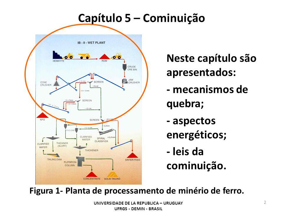 UNIVERSIDADE DE LA REPUBLICA – URUGUAY UFRGS - DEMIN - BRASIL 13 Capítulo 5 – Cominuição Figura 4- Forma geral da relação entre redução de tamanho e energia.