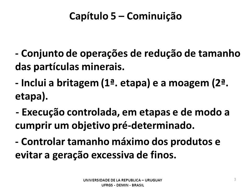 Capítulo 5 – Cominuição UNIVERSIDADE DE LA REPUBLICA – URUGUAY UFRGS - DEMIN - BRASIL 4 Na indústria, as operações de cominuição são necessárias para permitir as seguintes operações.