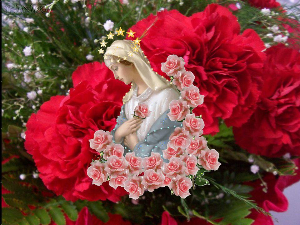 Toda a grandeza de Maria se justifica porque como mãe e discípula do Verbo, foi peregrina na fé, obediente à Palavra, sempre atenta às necessidades, a