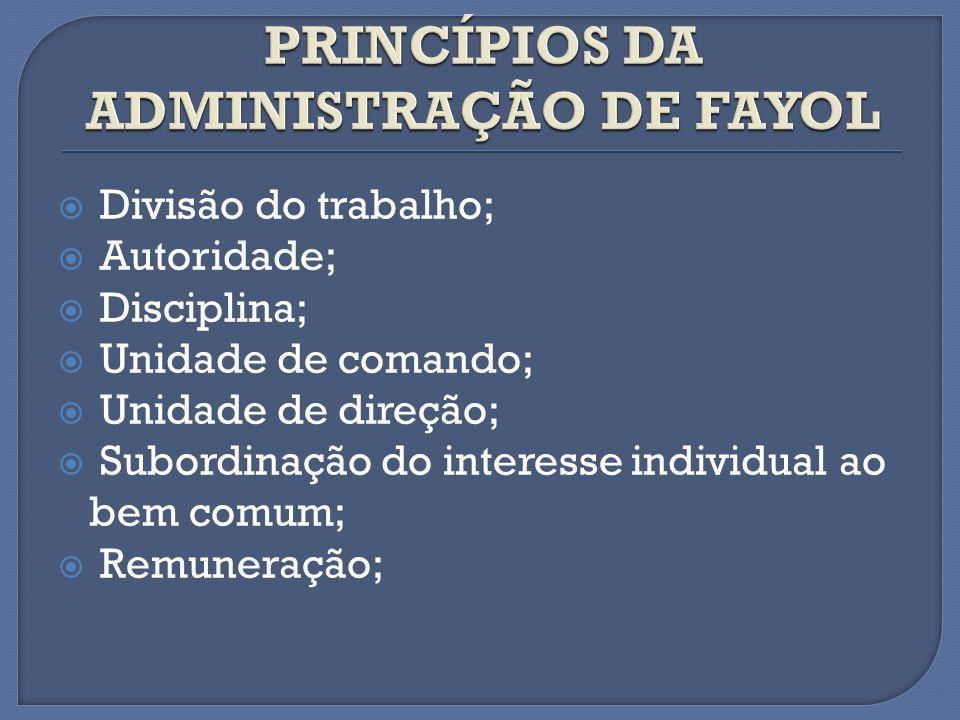 Divisão do trabalho; Autoridade; Disciplina; Unidade de comando; Unidade de direção; Subordinação do interesse individual ao bem comum; Remuneração;