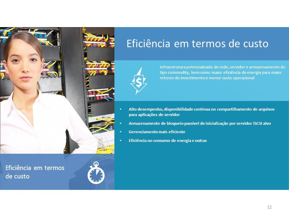 12 Eficiência em termos de custo Alto desempenho, disponibilidade contínua no compartilhamento de arquivos para aplicações de servidor Armazenamento de bloqueio passível de inicialização por servidor iSCSI alvo Gerenciamento mais eficiente Eficiência no consumo de energia e outras Infraestrutura potencializada de rede, servidor e armazenamento do tipo commodity, bem como maior eficiência de energia para maior retorno do investimento e menor custo operacional Eficiência em termos de custo
