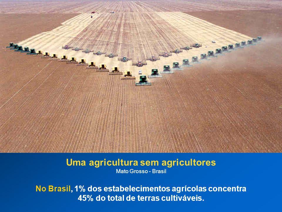 Uma agricultura sem agricultores Mato Grosso - Brasil No Brasil, 1% dos estabelecimentos agrícolas concentra 45% do total de terras cultiváveis.