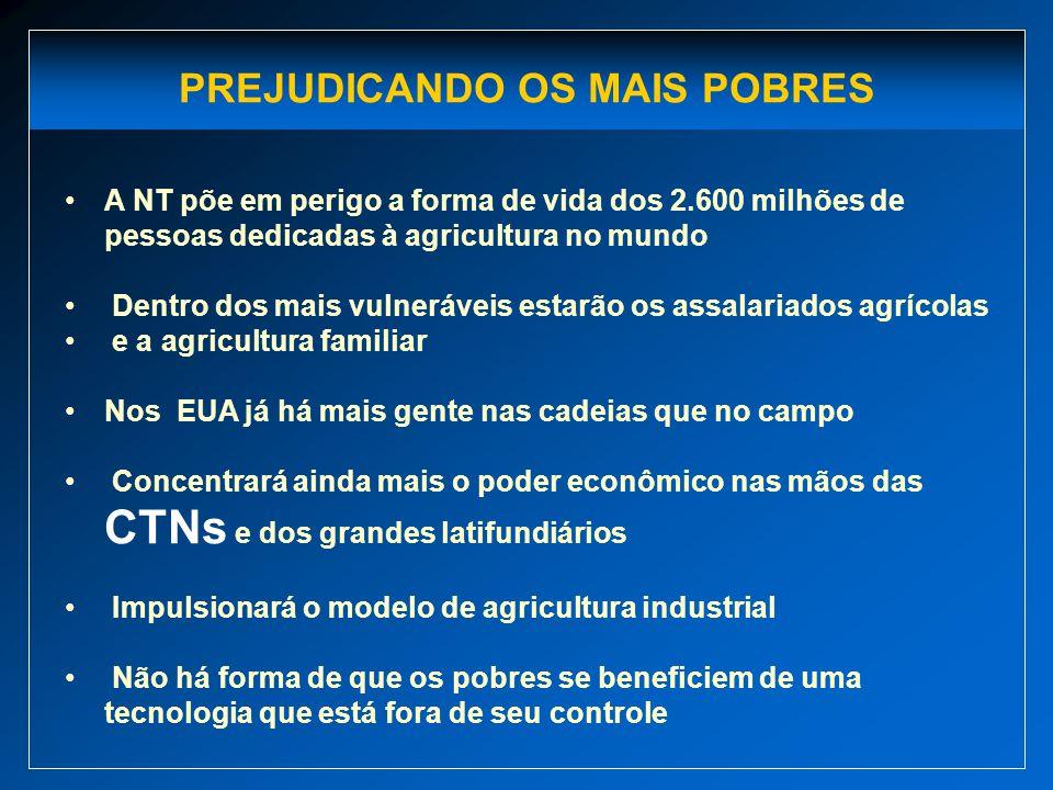 PREJUDICANDO OS MAIS POBRES A NT põe em perigo a forma de vida dos 2.600 milhões de pessoas dedicadas à agricultura no mundo Dentro dos mais vulneráve