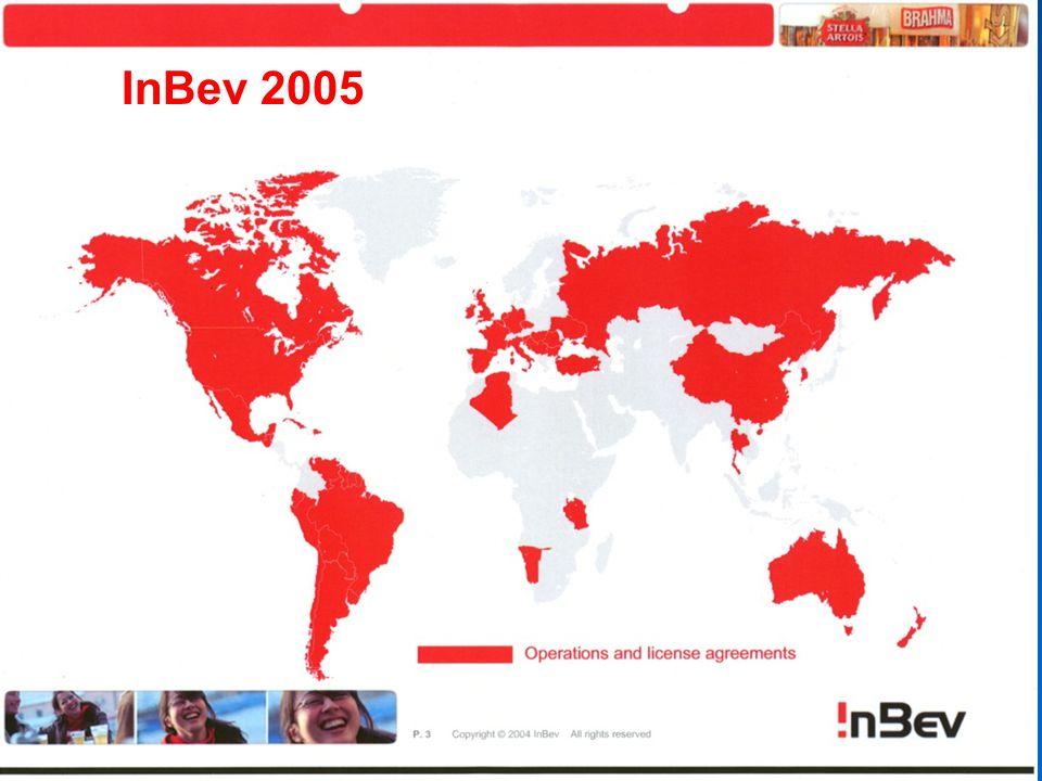 InBev 2005