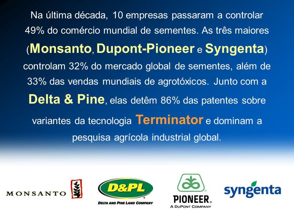 Na última década, 10 empresas passaram a controlar 49% do comércio mundial de sementes. As três maiores ( Monsanto, Dupont-Pioneer e Syngenta ) contro