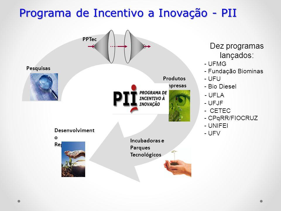 Pesquisas Produtos Empresas Incubadoras e Parques Tecnológicos Desenvolviment o Regional PPTec Programa de Incentivo a Inovação - PII Dez programas la