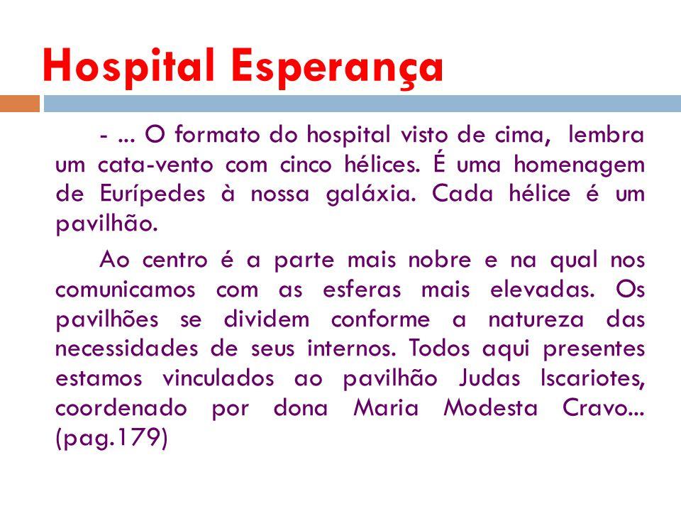 -...O formato do hospital visto de cima, lembra um cata-vento com cinco hélices.