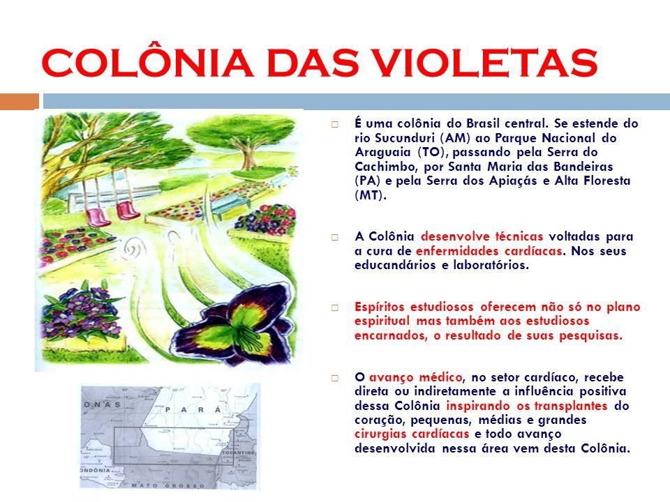 É uma colônia do Brasil central.