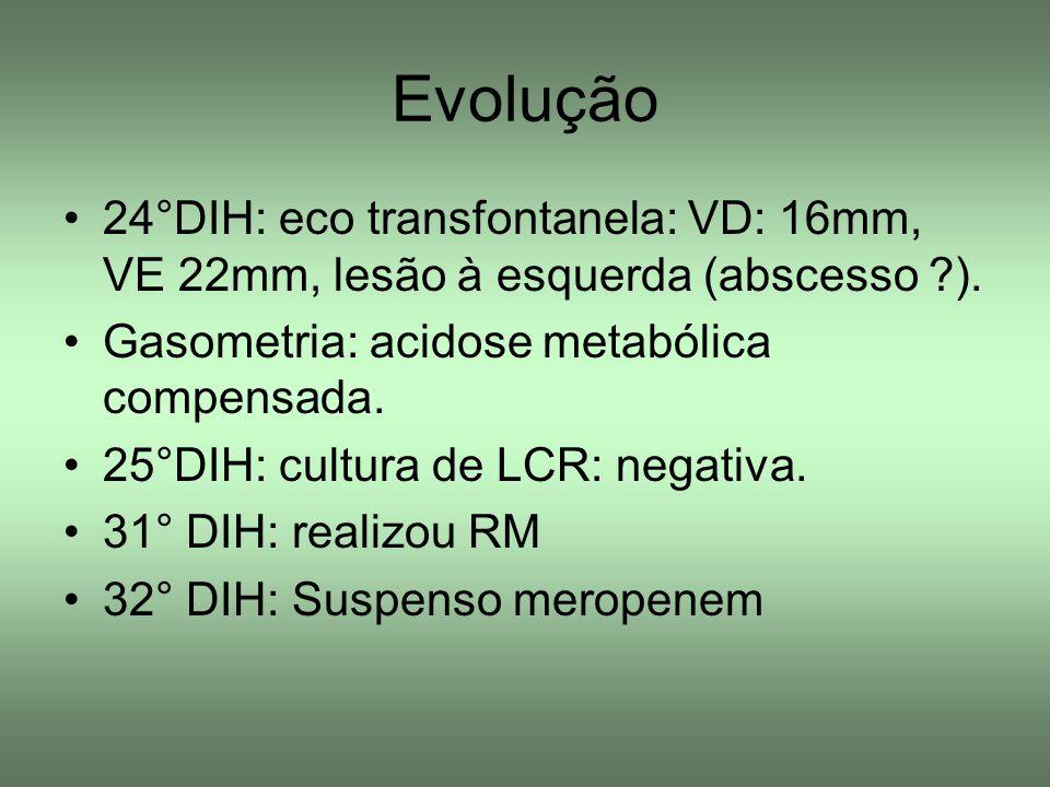 Evolução 24°DIH: eco transfontanela: VD: 16mm, VE 22mm, lesão à esquerda (abscesso ?). Gasometria: acidose metabólica compensada. 25°DIH: cultura de L