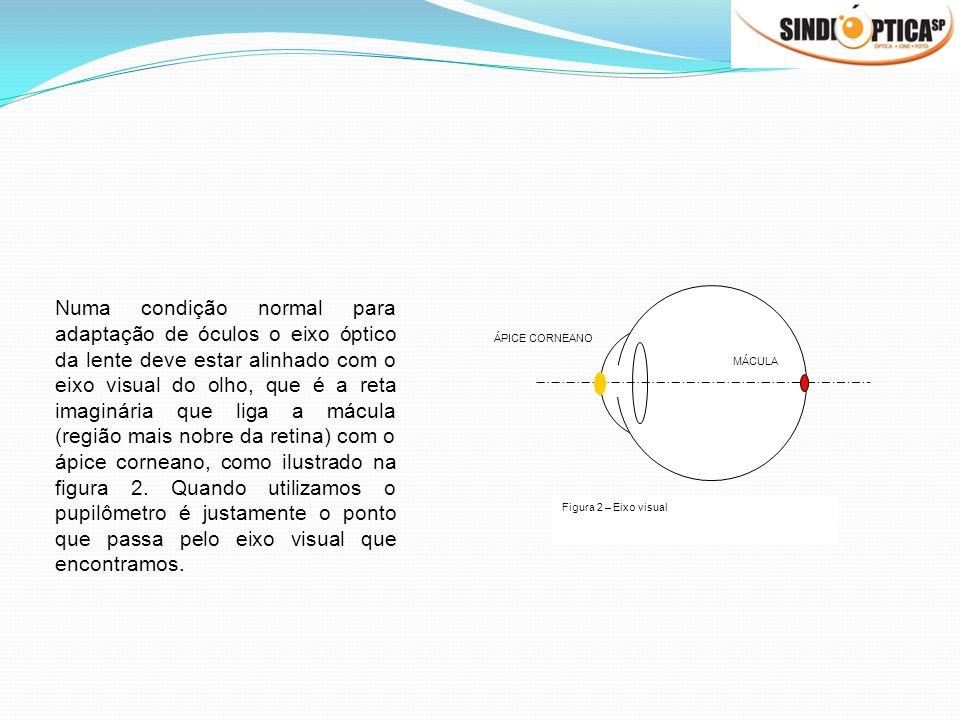 ÁPICE CORNEANO MÁCULA Figura 2 – Eixo visual Numa condição normal para adaptação de óculos o eixo óptico da lente deve estar alinhado com o eixo visua