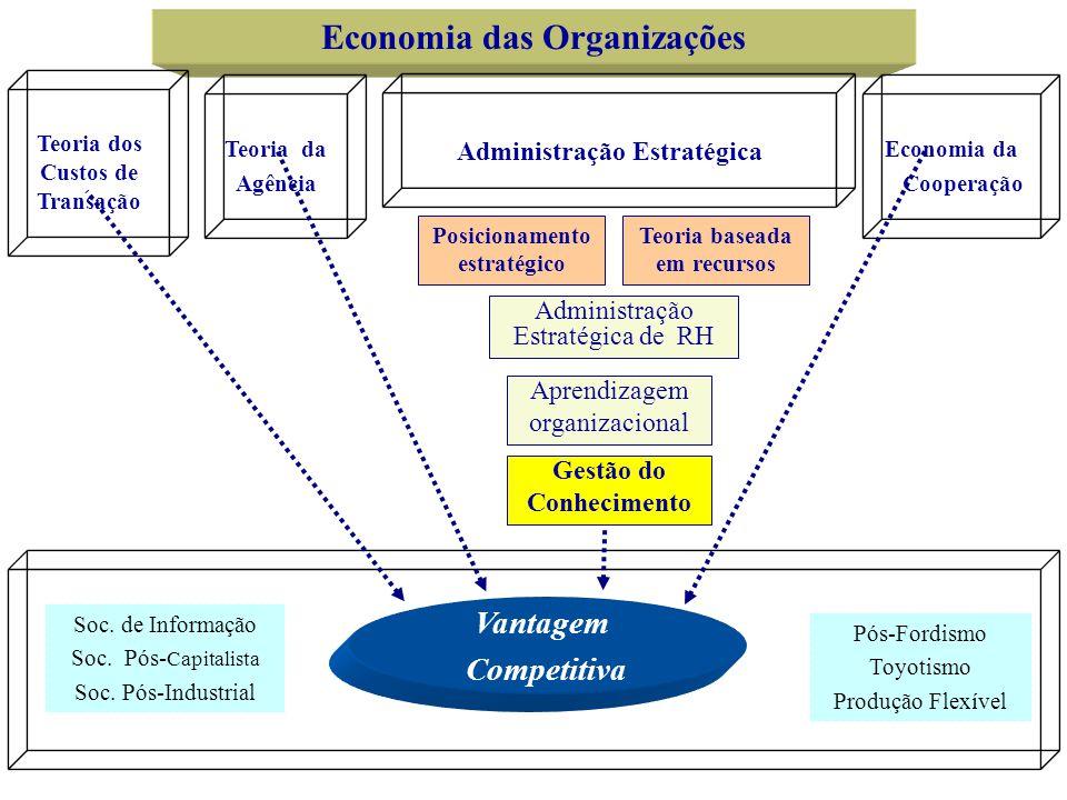 Economia das Organizações Teoria da Agência Teoria dos Custos de Transação Administração Estratégica Economia da Cooperação Vantagem Competitiva Posic