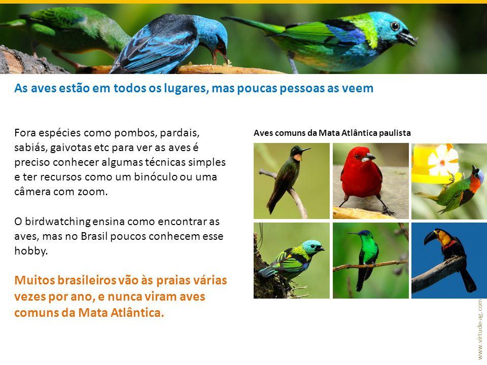 www.virtude-ag.com As aves estão em todos os lugares, mas poucas pessoas as veem Fora espécies como pombos, pardais, sabiás, gaivotas etc para ver as aves é preciso conhecer algumas técnicas simples e ter recursos como um binóculo ou uma câmera com zoom.