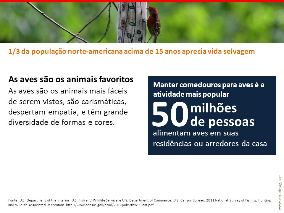 www.virtude-ag.com No Brasil ainda não temos dados detalhados sobre os apreciadores de vida selvagem A caça de animais silvestres é proibida (mas temos o grande problema de animais capturados para o tráfico, em especial aves para gaiolas) A pesca amadora é disseminada e está em expansão.