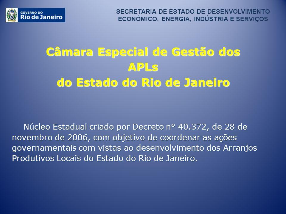 SECRETARIA DE ESTADO DE DESENVOLVIMENTO ECONÔMICO, ENERGIA, INDÚSTRIA E SERVIÇOS Câmara Especial de Gestão dos APLs do Estado do Rio de Janeiro Núcleo