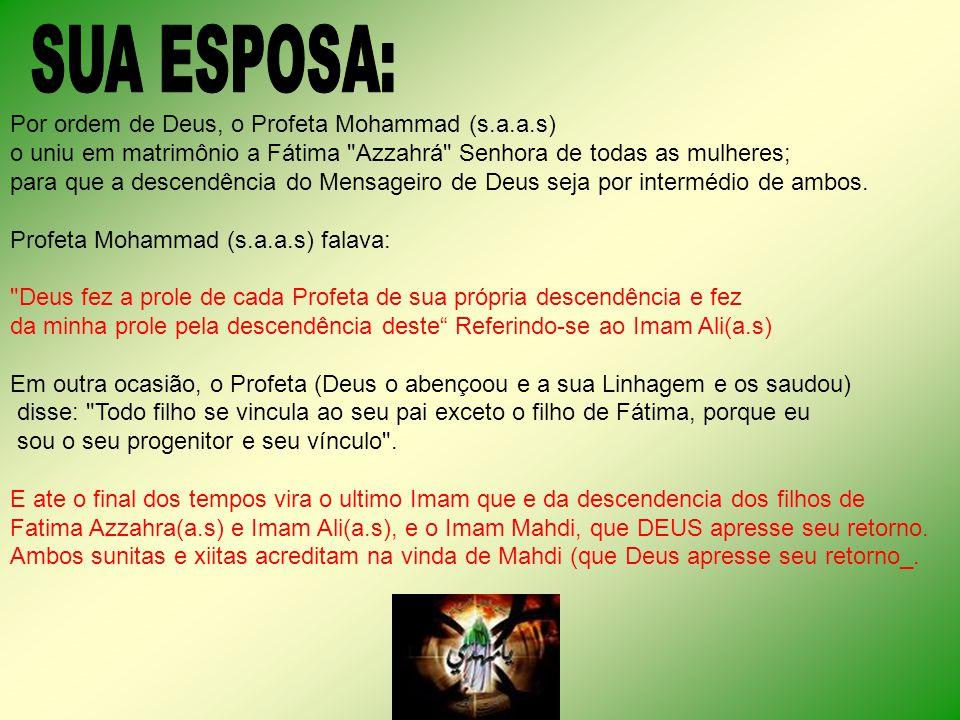 Por ordem de Deus, o Profeta Mohammad (s.a.a.s) o uniu em matrimônio a Fátima Azzahrá Senhora de todas as mulheres; para que a descendência do Mensageiro de Deus seja por intermédio de ambos.