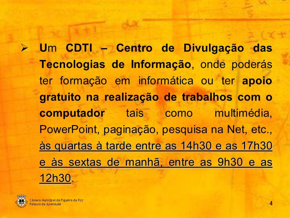 Câmara Municipal da Figueira da Foz Pelouro da Juventude 5 CDTI