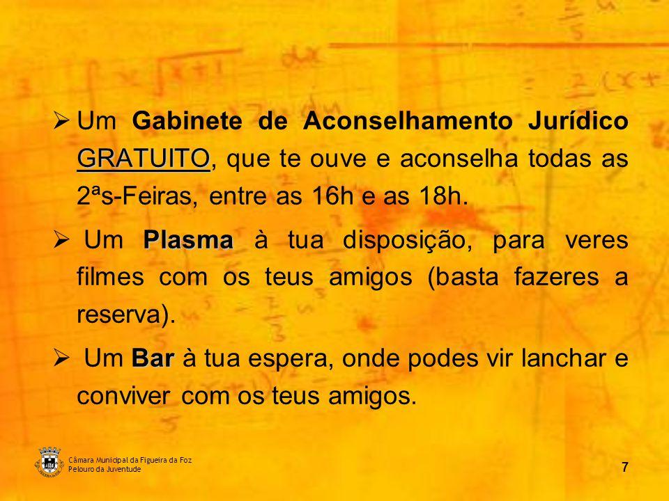 Câmara Municipal da Figueira da Foz Pelouro da Juventude 8 Espaço Multiusos:
