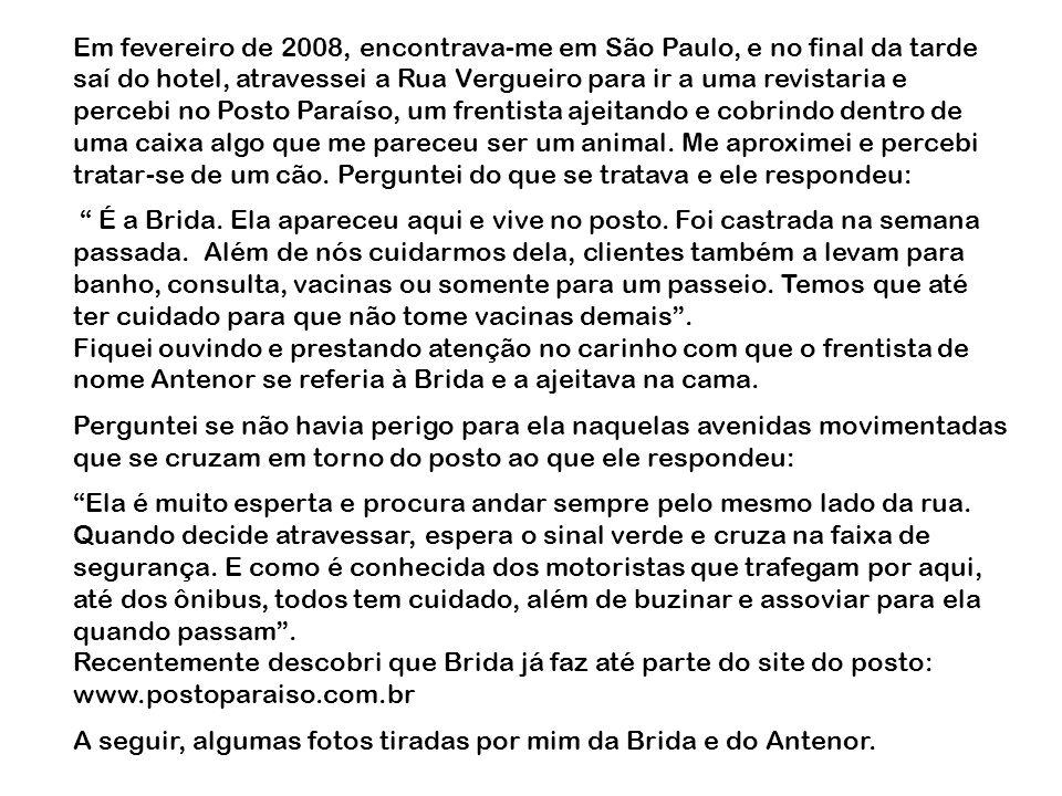 Em fevereiro de 2008, encontrava-me em São Paulo, e no final da tarde saí do hotel, atravessei a Rua Vergueiro para ir a uma revistaria e percebi no P