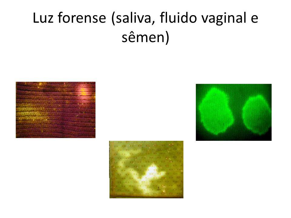 Luz forense (saliva, fluido vaginal e sêmen)