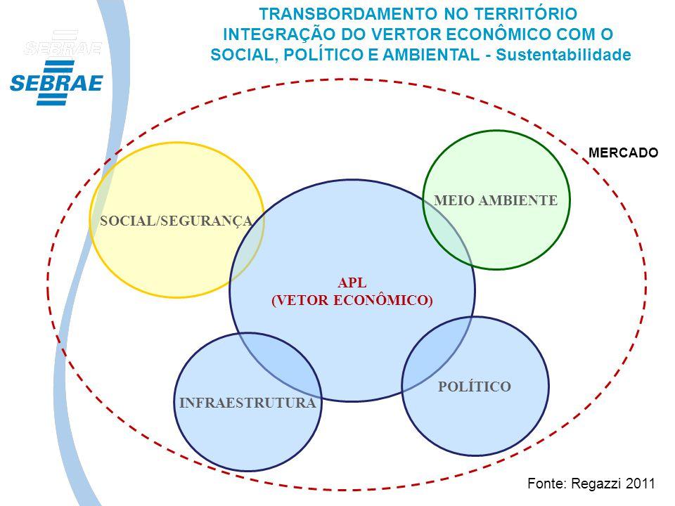 SOCIAL/SEGURANÇA APL (VETOR ECONÔMICO) MEIO AMBIENTE INFRAESTRUTURA POLÍTICO TRANSBORDAMENTO NO TERRITÓRIO INTEGRAÇÃO DO VERTOR ECONÔMICO COM O SOCIAL