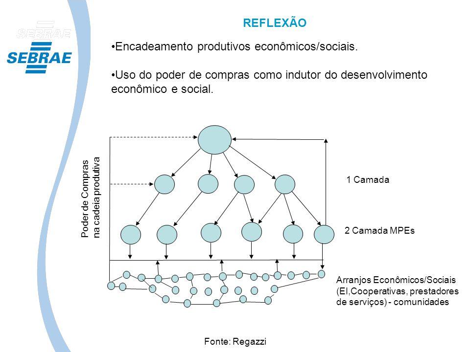 1 Camada 2 Camada MPEs Arranjos Econômicos/Sociais (EI,Cooperativas, prestadores de serviços) - comunidades Poder de Compras na cadeia produtiva Fonte