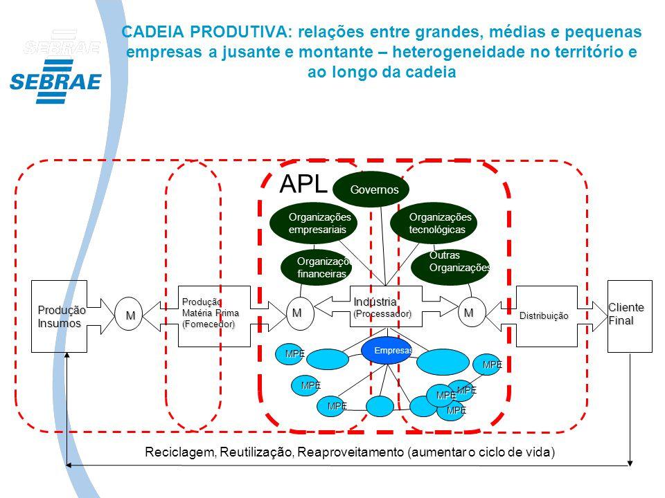 CADEIA PRODUTIVA: relações entre grandes, médias e pequenas empresas a jusante e montante – heterogeneidade no território e ao longo da cadeia Produçã