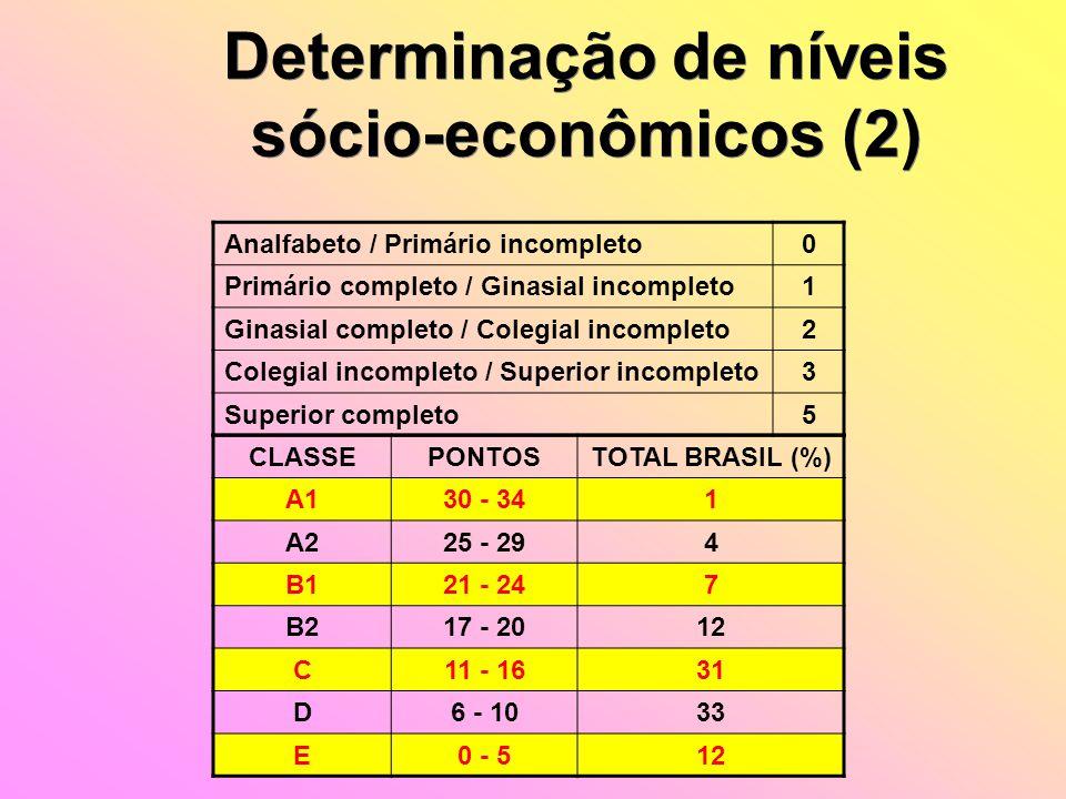 Determinação de níveis sócio-econômicos (2) Determinação de níveis sócio-econômicos (2) Analfabeto / Primário incompleto0 Primário completo / Ginasial