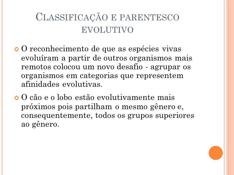 C LASSIFICAÇÃO E PARENTESCO EVOLUTIVO O reconhecimento de que as espécies vivas evoluíram a partir de outros organismos mais remotos colocou um novo desafio - agrupar os organismos em categorias que representem afinidades evolutivas.