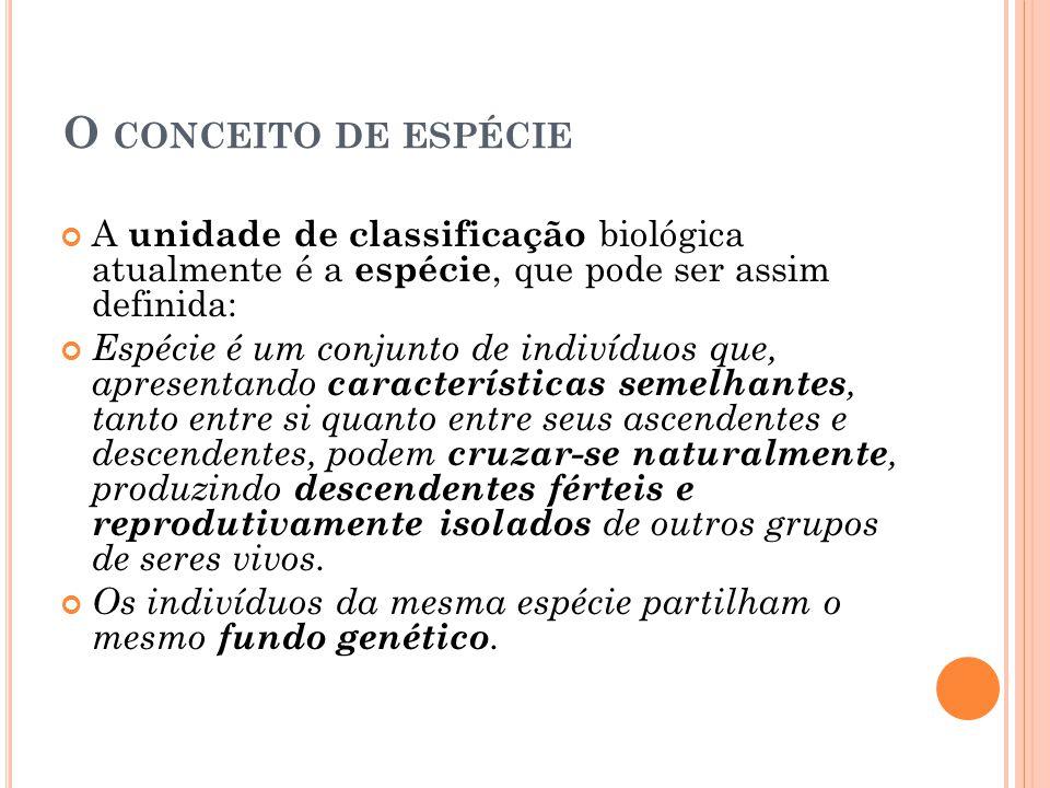 O CONCEITO DE ESPÉCIE A unidade de classificação biológica atualmente é a espécie, que pode ser assim definida: Espécie é um conjunto de indivíduos qu