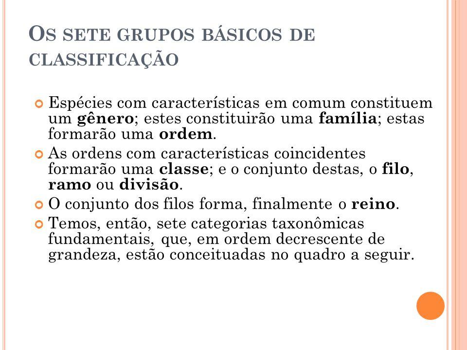 O S SETE GRUPOS BÁSICOS DE CLASSIFICAÇÃO Espécies com características em comum constituem um gênero ; estes constituirão uma família ; estas formarão