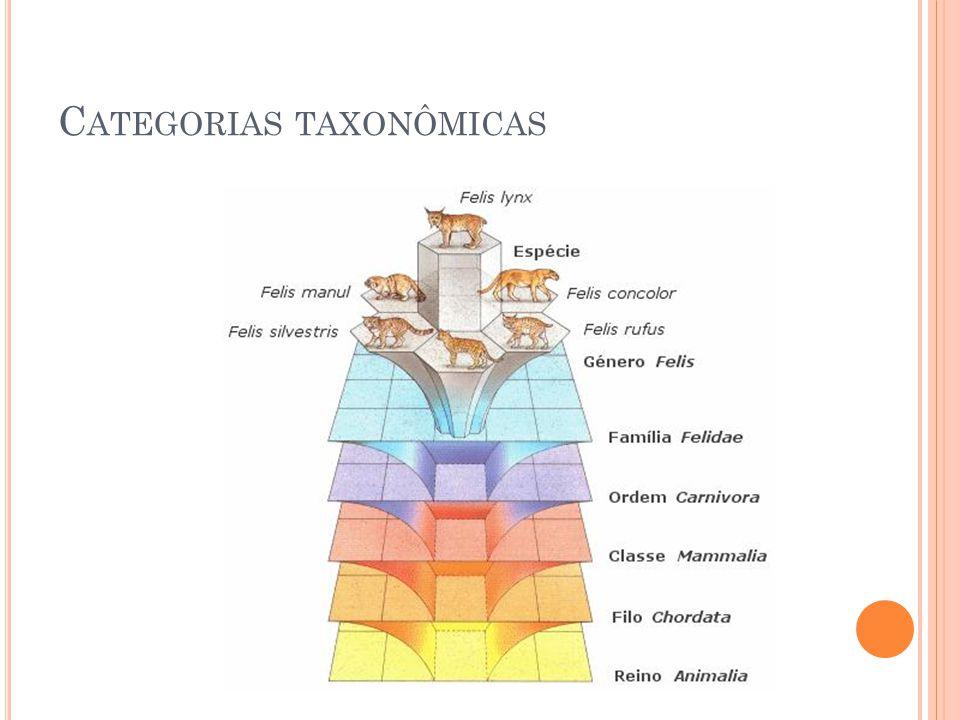 C ATEGORIAS TAXONÔMICAS