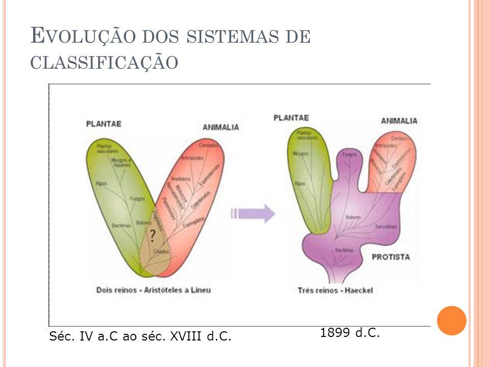 E VOLUÇÃO DOS SISTEMAS DE CLASSIFICAÇÃO Séc. IV a.C ao séc. XVIII d.C. 1899 d.C.