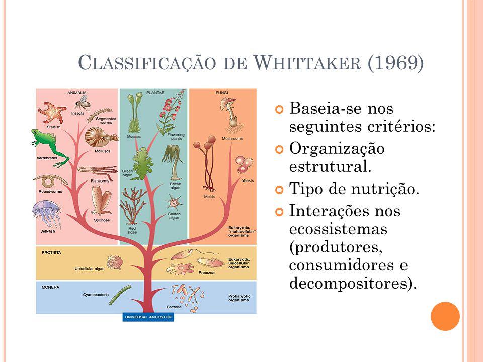 C LASSIFICAÇÃO DE W HITTAKER (1969) Baseia-se nos seguintes critérios: Organização estrutural. Tipo de nutrição. Interações nos ecossistemas (produtor