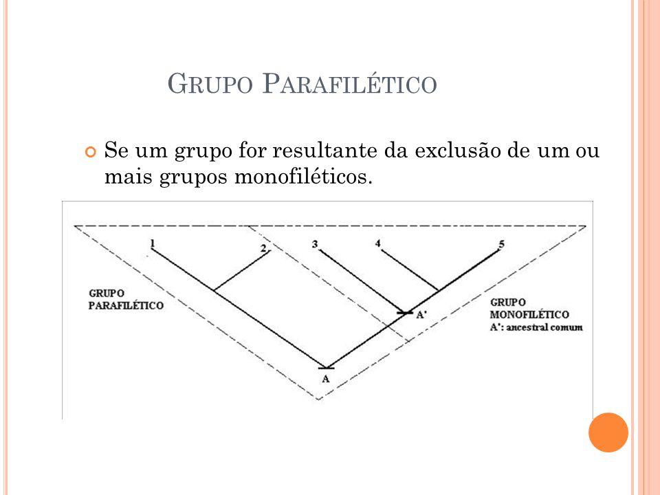 G RUPO P ARAFILÉTICO Se um grupo for resultante da exclusão de um ou mais grupos monofiléticos.