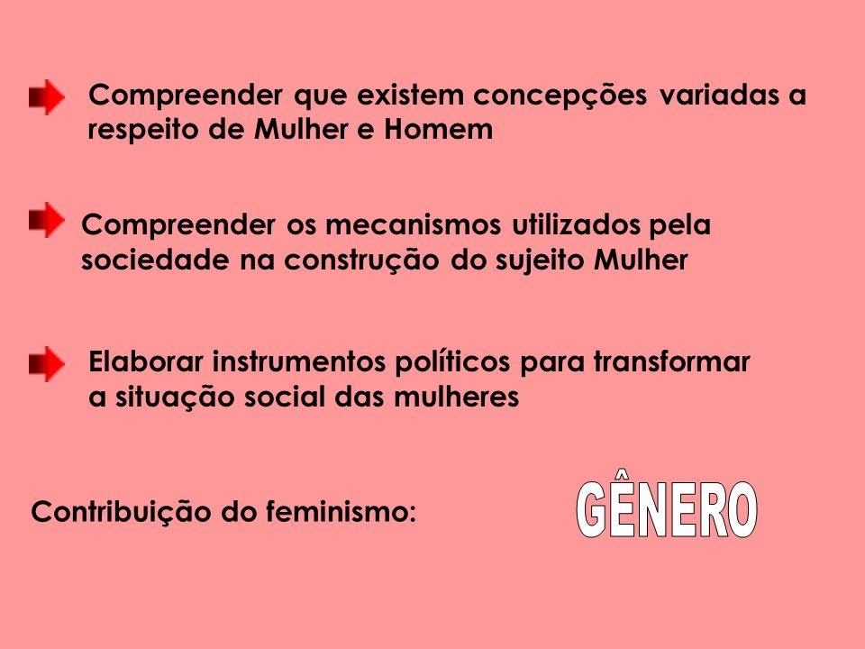 Elaborar instrumentos políticos para transformar a situação social das mulheres Contribuição do feminismo: Compreender que existem concepções variadas a respeito de Mulher e Homem Compreender os mecanismos utilizados pela sociedade na construção do sujeito Mulher