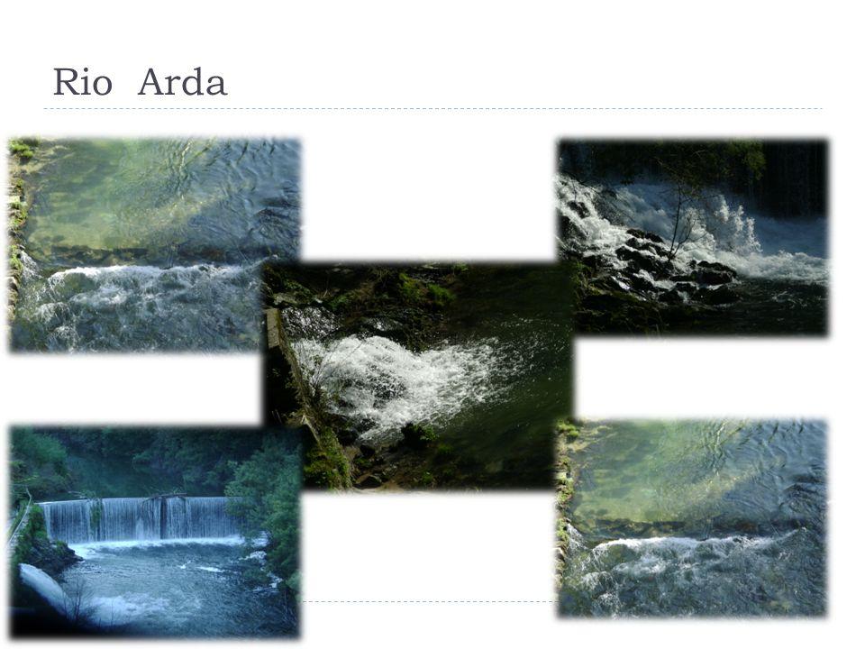 Rio Arda