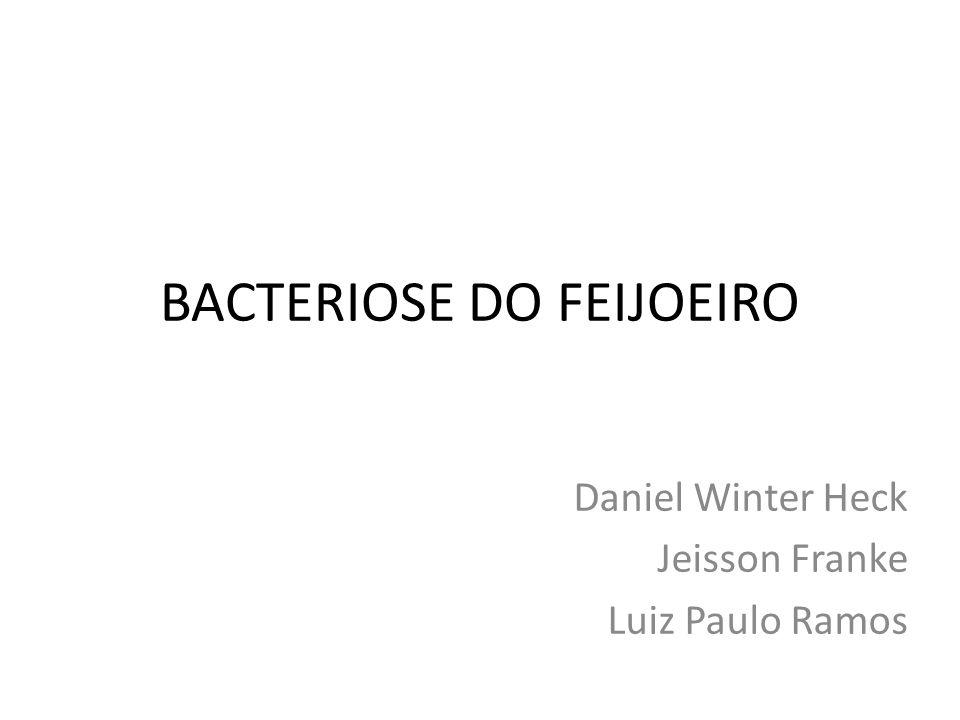 BACTERIOSE DO FEIJOEIRO Daniel Winter Heck Jeisson Franke Luiz Paulo Ramos