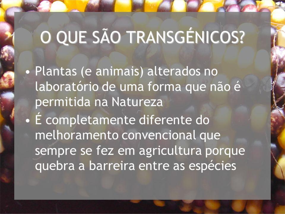 O QUE SÃO TRANSGÉNICOS.