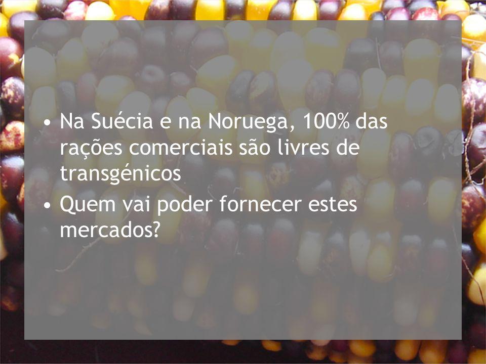 Na Suécia e na Noruega, 100% das rações comerciais são livres de transgénicos Quem vai poder fornecer estes mercados?