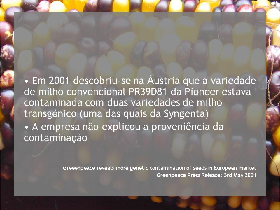 Em 2001 descobriu-se na Á ustria que a variedade de milho convencional PR39D81 da Pioneer estava contaminada com duas variedades de milho transg é nico (uma das quais da Syngenta) A empresa não explicou a proveniência da contamina ç ão Greeenpeace reveals more genetic contamination of seeds in European market Greenpeace Press Release: 3rd May 2001