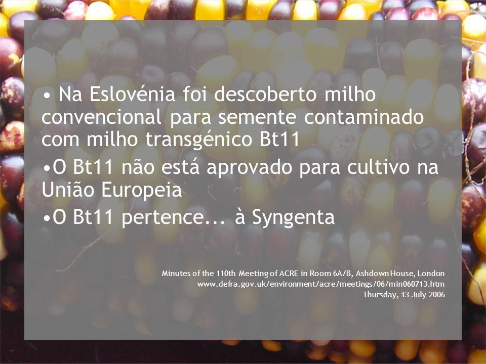 Na Eslovénia foi descoberto milho convencional para semente contaminado com milho transgénico Bt11 O Bt11 não está aprovado para cultivo na União Europeia O Bt11 pertence...