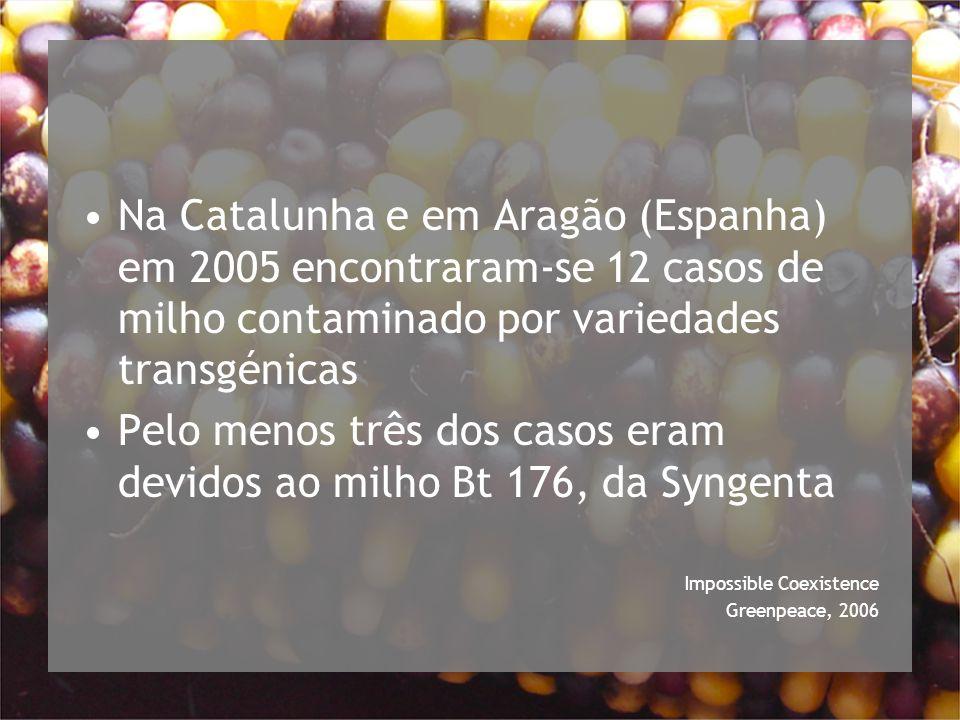 Na Catalunha e em Aragão (Espanha) em 2005 encontraram-se 12 casos de milho contaminado por variedades transgénicas Pelo menos três dos casos eram devidos ao milho Bt 176, da Syngenta Impossible Coexistence Greenpeace, 2006
