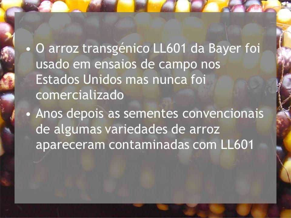 O arroz transgénico LL601 da Bayer foi usado em ensaios de campo nos Estados Unidos mas nunca foi comercializado Anos depois as sementes convencionais de algumas variedades de arroz apareceram contaminadas com LL601