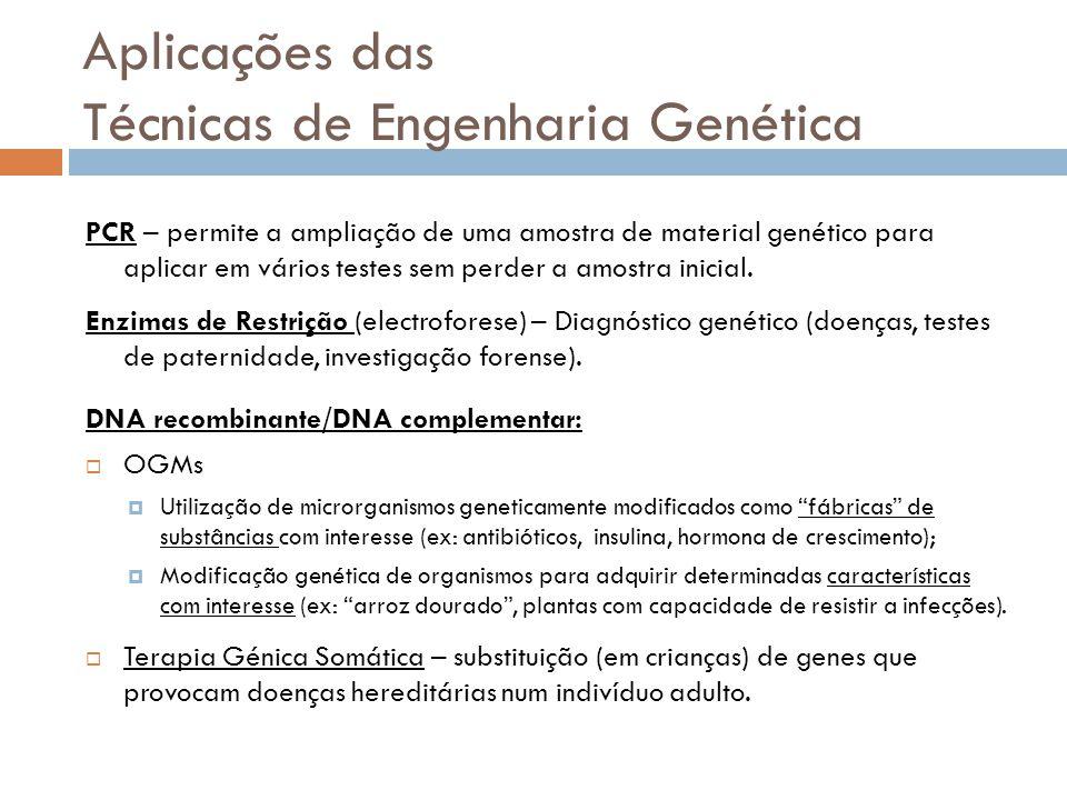 Aplicações das Técnicas de Engenharia Genética PCR – permite a ampliação de uma amostra de material genético para aplicar em vários testes sem perder
