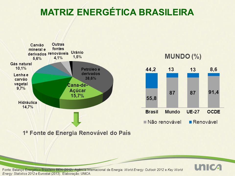 MATRIZ ENERGÉTICA BRASILEIRA MUNDO (%) 1ª Fonte de Energia Renovável do País Fonte: Balanço Energético Brasileiro BEN (2012), Agência Internacional de