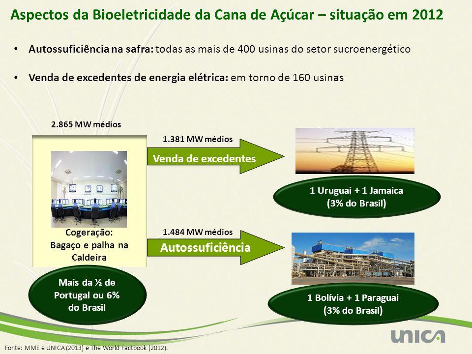 Aspectos da Bioeletricidade da Cana de Açúcar – situação em 2012 Autossuficiência na safra: todas as mais de 400 usinas do setor sucroenergético Venda