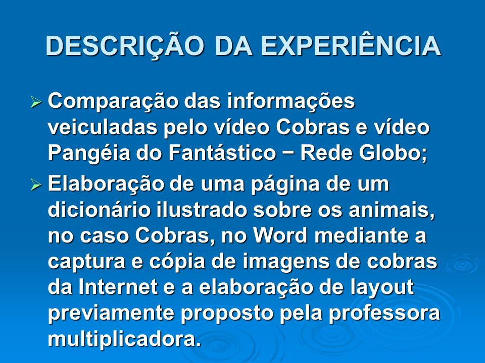 DESCRIÇÃO DA EXPERIÊNCIA  Comparação das informações veiculadas pelo vídeo Cobras e vídeo Pangéia do Fantástico − Rede Globo;  Elaboração de uma pág