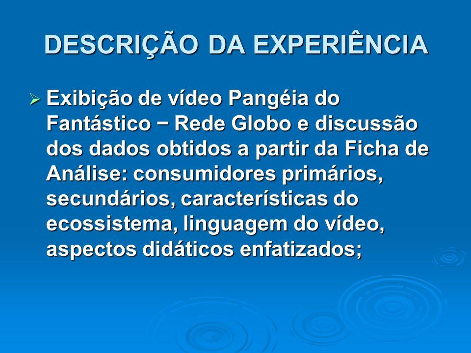 DESCRIÇÃO DA EXPERIÊNCIA  Exibição de vídeo Pangéia do Fantástico − Rede Globo e discussão dos dados obtidos a partir da Ficha de Análise: consumidor