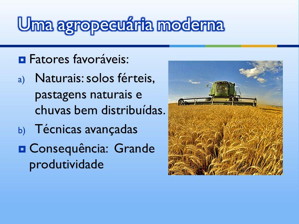  Fatores favoráveis: a) Naturais: solos férteis, pastagens naturais e chuvas bem distribuídas. b) Técnicas avançadas  Consequência: Grande produtivi